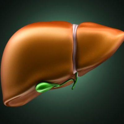 Карсил при лечении гепатита — вирусных заболеваний печени