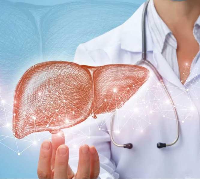 Карсил при лечении гепатита - вирусных заболеваний печени